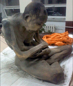 Mummified body found in Mongolia